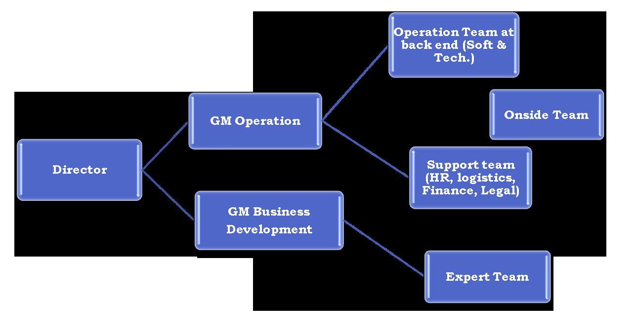 organization hierarchy